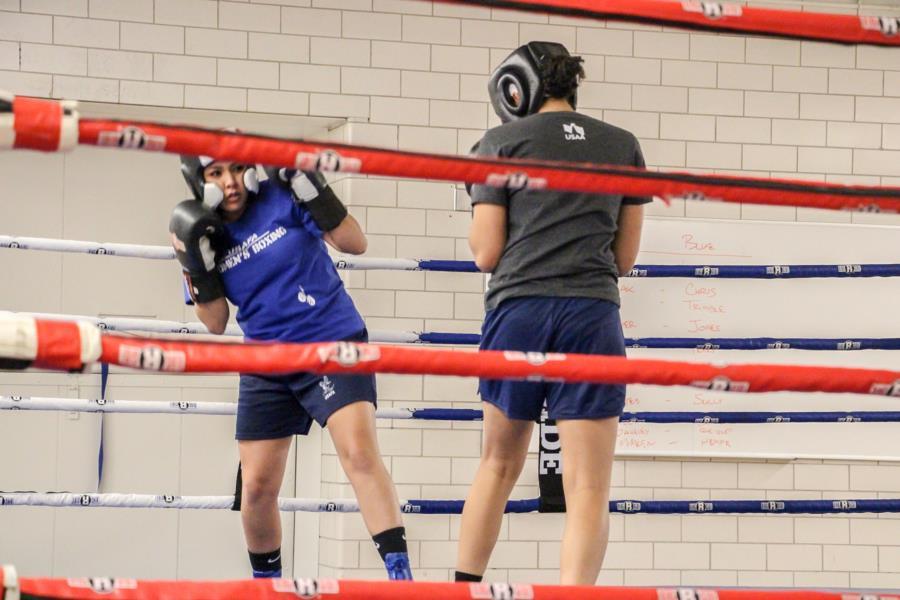 Women's Boxing Club