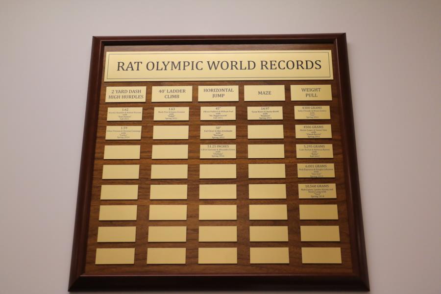 Spring Semester Rat Olympics Trials