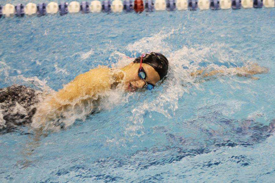 USAFA Swimming and Diving Competion
